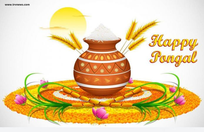 happy-pongal-2016