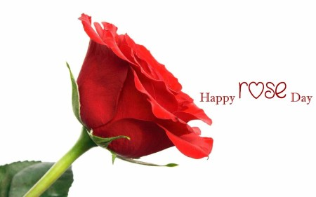 20-Happy-Rose-Day-HD-Wallapaper-Images14