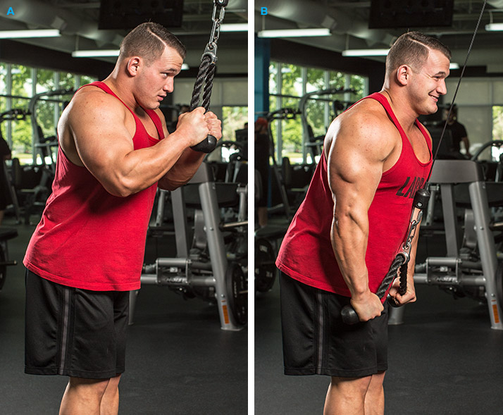 7-must-do-hacks-for-classic-arm-exercises-6