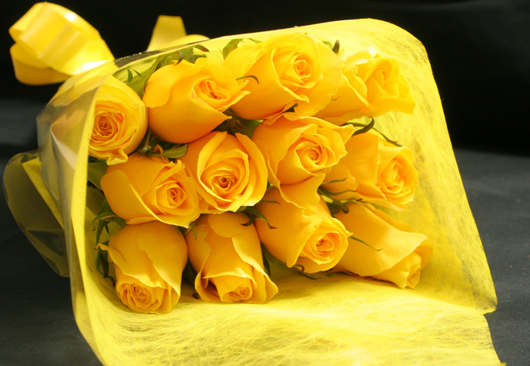 beautiful-yellow-roses-7