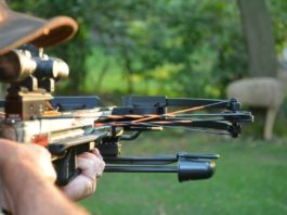 Why You Should Try Hunting With a Crossbow