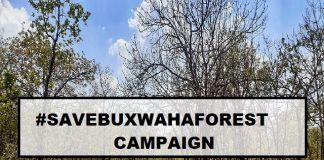 All the details Involving the Save Buxwaha Forest Campaigns