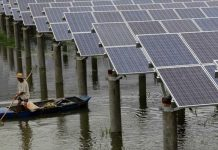 Solar Panels for Fish Farming