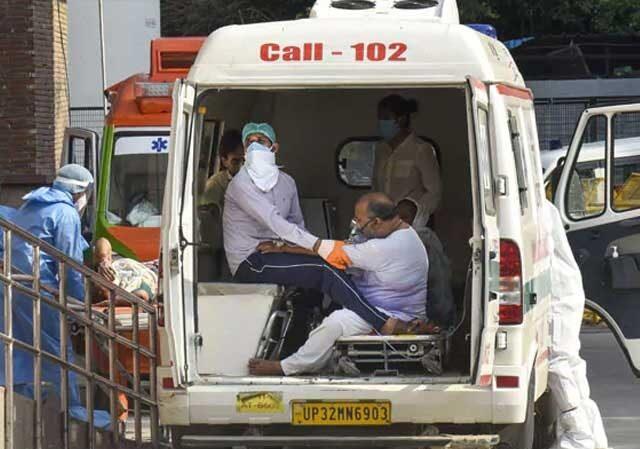 bird flu in india